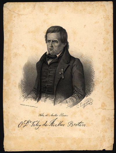 O Dr. Felix de Avellar Brotero