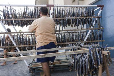 Proceso de tendido de pez volador