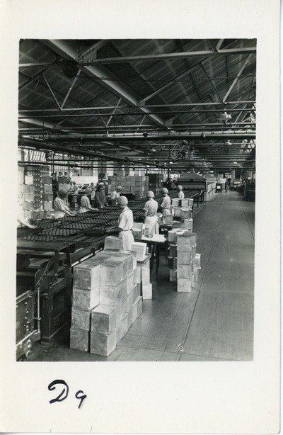 Female workers from Aintree packing biscuits into boxes
