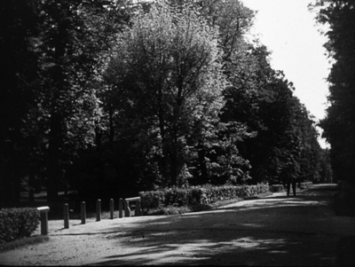 Babie lato w Warszawie
