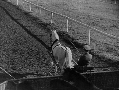 Ćwiczenia koni do pracy w zaprzęgach wojskowych