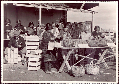 Sale of grapes