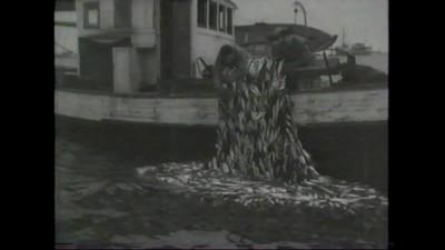 Herring Fishery movie