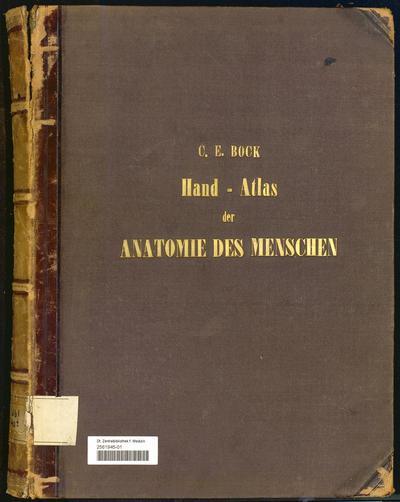 Handatlas der Anatomie des Menschen : nebst einem tabellarischen Handbuche der Anatomie
