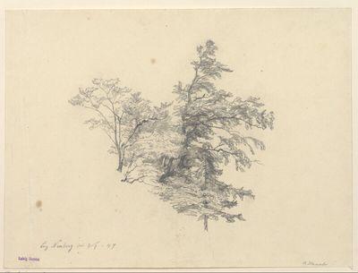 Baumschlag bei Neuberg