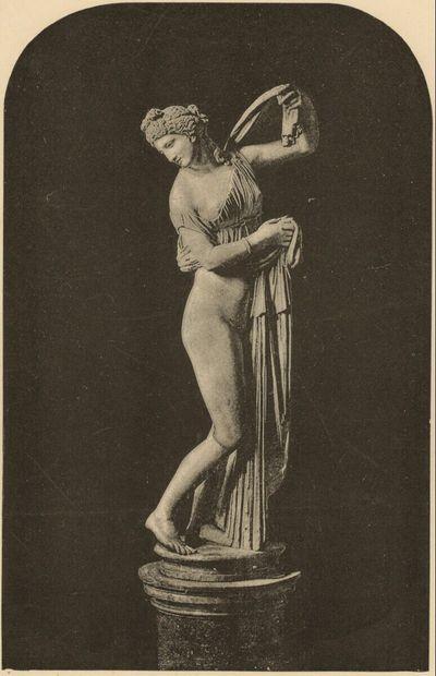 Venus Callipyge