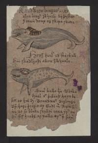 Um Íslands aðskiljanlegar náttúrur