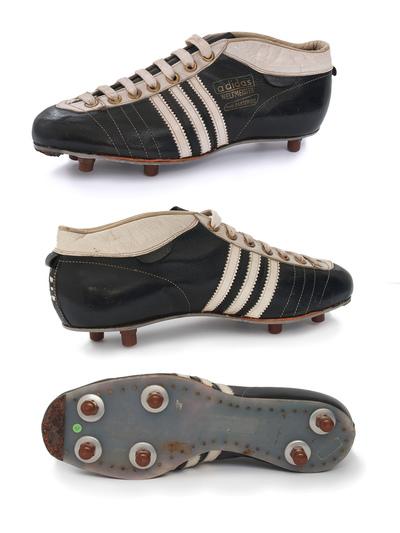 6. FIFA-Fussball-Weltmeisterschaft - 1958, Schweden