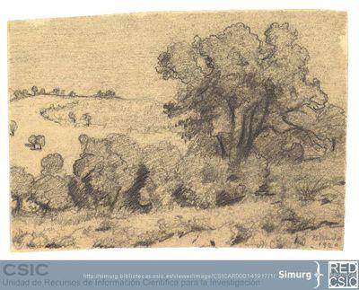 Javier de Winthuysen (1874-1960) | Material gráfico; Dibujo de un paisaje natural en El Pardo