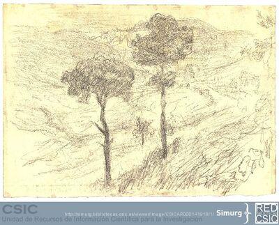 Javier de Winthuysen (1874-1960) | Material gráfico; Dibujo de paisaje natural con dos pinos en primer lugar