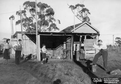 Immigrants Australia
