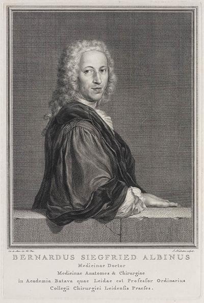 Portret Bernardus Siegfried Albinus