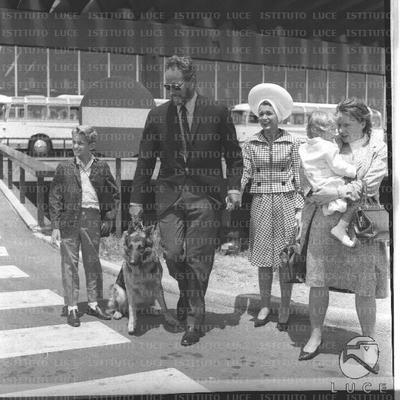 Charlton Heston con il cane al guinzaglio attraversa le strisce pedonali all'esterno dell'aeroporto seguito dalla moglie, dal figlio e da una donna con la piccola Holly in braccio - totale