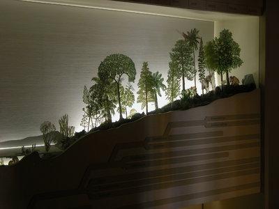 Diorama: Erdgeschichtliche Entwicklung der Pflanzen: Ordovizium - Quartär