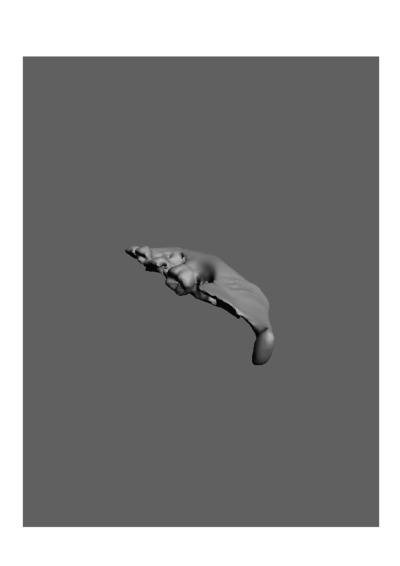 Mandibula humana de uma criança do sexo masculino, com número de colecção 19 da colecção de Antropologia Luís Lopes, do Museu Nacional de História Natural e da Ciência, Lisboa, Portugal.