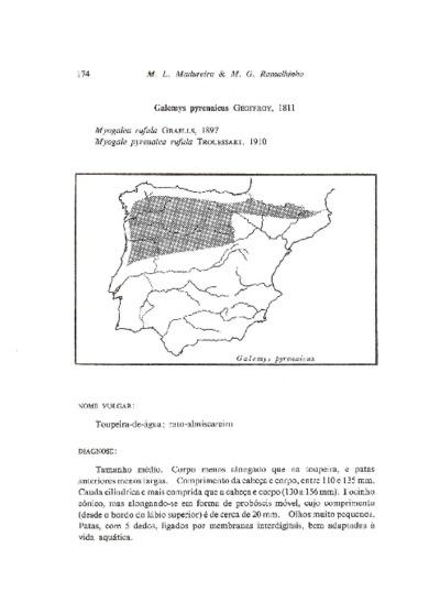 Ficha reunindo informação sobre o Toupeira-de-água, da espécie Galemys pyrenaicus (É. Geoffroy Saint-Hilaire, 1811), em Portugal.