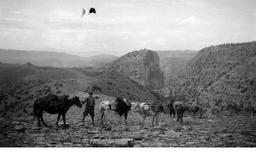 Άνδρες με άλογα. Ήπειρος, γύρω στα 1935 Έλλη Παπαδημητρίου (ΦΑ_19_634)