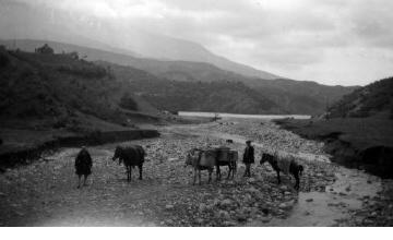 Άνδρες με γαϊδούρια σε κοίτη ποταμού. Ήπειρος, γύρω στα 1935 Έλλη Παπαδημητρίου (ΦΑ_19_639)