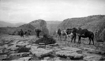 Άνδρες με άλογα. Χαράδρα Βίκου, γύρω στα 1935 Έλλη Παπαδημητρίου (ΦΑ_19_640)