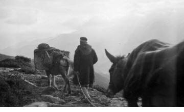 Άνδρες με γαϊδούρια. Ήπειρος, γύρω στα 1935 Έλλη Παπαδημητρίου (ΦΑ_19_642)
