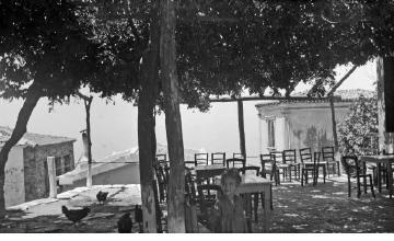 Παραδοσιακή ταβέρνα ή καφενείο. Γύρω στα 1935 Έλλη Παπαδημητρίου (ΦΑ_19_655)