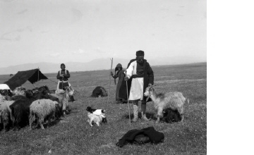 Σαρακατσάνοι με κοπάδι κατσίκες. Χαλκιδική, γύρω στα 1935 Έλλη Παπαδημητρίου (ΦΑ_19_762)