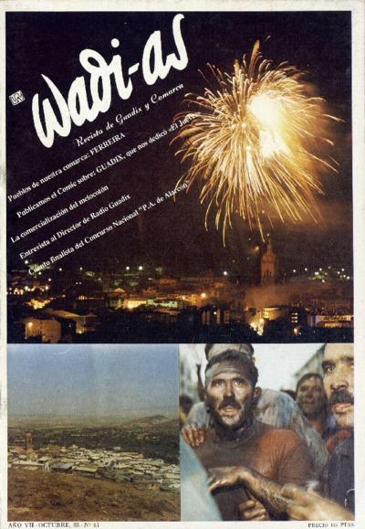 Wadi-as : informativo comarcal: Año VII Número 61 - 1988 octubre 1