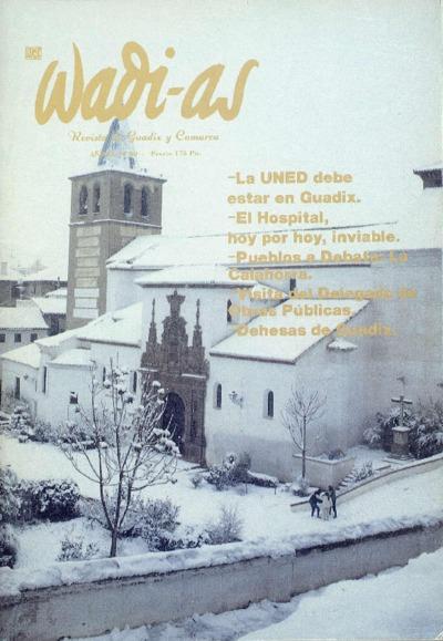 Wadi-as : informativo comarcal: Año IX Número 80 - 1990 diciembre 1