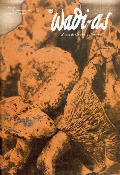 Wadi-as : informativo comarcal: Año XVI Número 128 - 1997 diciembre 1