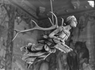 Lüsterweibchen mit Spruchtafel
