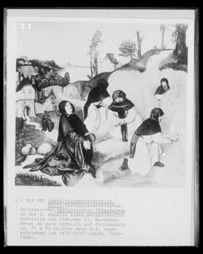 Szene aus dem Leben des heiligen Bernhard, der heilige Bernhard betet für eine gute Ernte