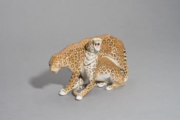 Leopardengruppe