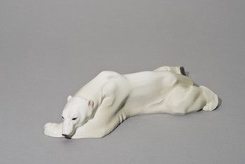 Liegender Eisbär