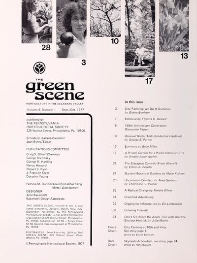 Green scene /