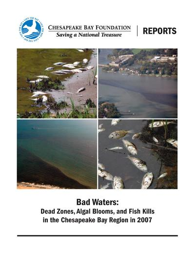 Dead zones, algal blooms, and fish kills in the Chesapeake Bay region in 2007