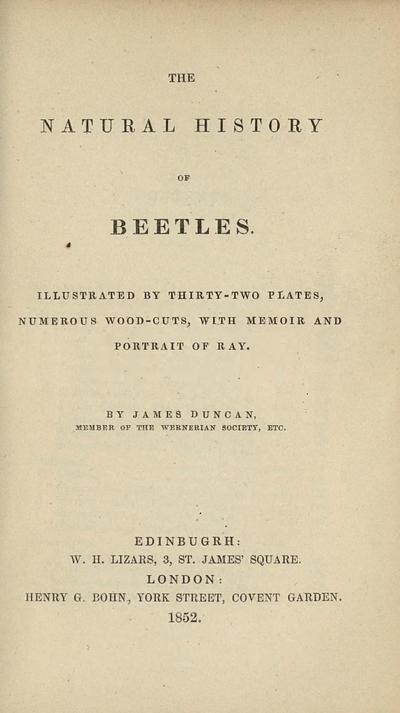 Natural history of beetles