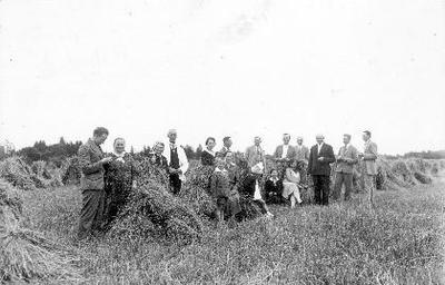 Siužetinė. Rugiapjūtė Kregždžių ūkyje Jukniškyje. Šeimininkai ir svečiai prie rugių gubų. Pirmoje eilėje prie sėdinčių moterų stovi Bružas. Antroje eilėje iš kairės: J. Kregždė, motina, x, vet. gydytojas P.Nastopka, x, agr. A. Binkis, x, kiti broliai Kregždės.