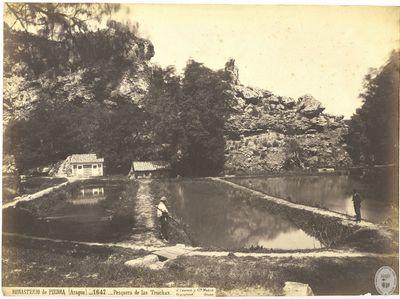 Monasterio de Piedra (Aragón) [Material gráfico] : 1647 : Pesquera de las truchas