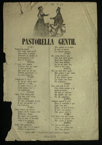 Pastorella gentil