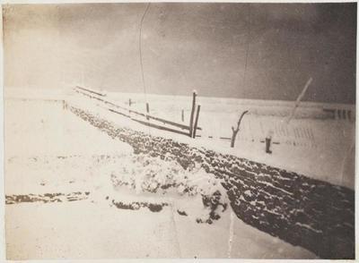 tirage photographique ; Le jardin de Marine-Terrace sous la neige