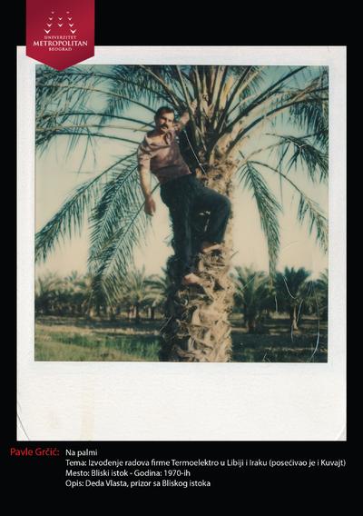 Na palmi