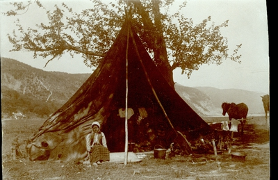 Циганска шатра у Д. Милановцу