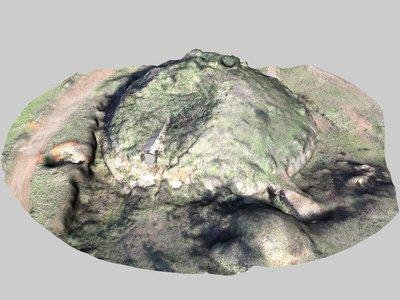 Moretti Mound 319