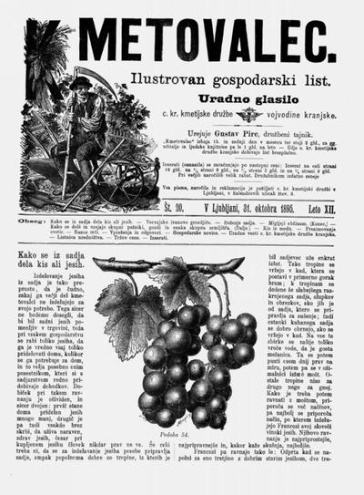 Kmetovalec: gospodarski list s podobami 1895 10 31