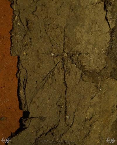 Inscription from Rome, Coem. s.Agnetis - ICVR VIII, 21569.c