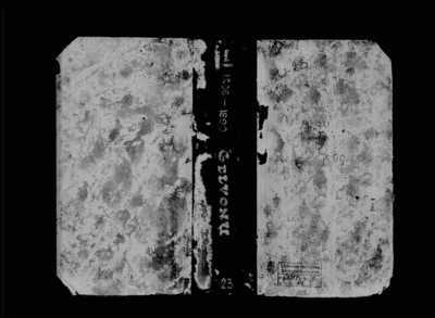 Gelvonų RKB gimimo metrikų knyga. 1896--1899 m.
