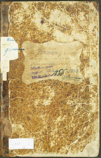 Pakruojo RKB gimimo metrikų knyga. 1856--1859 m.