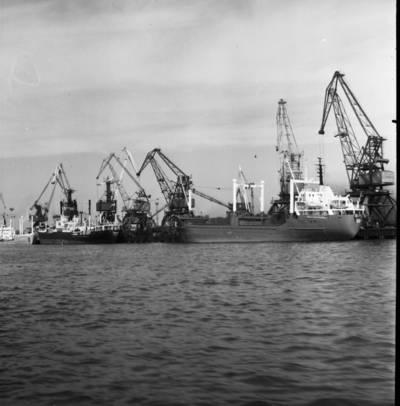 Klaipėdos prekybos uostas. Laivai / Bernardas Aleknavičius. - 1974