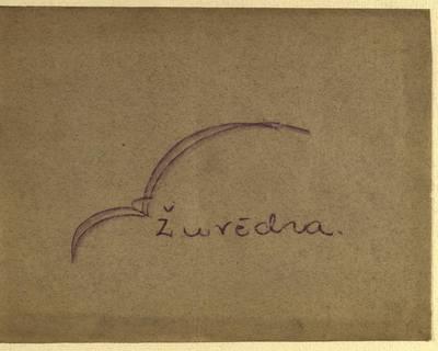 Laikraštėlių kolekcija. Jaunimo organizacijų leidiniai. Žuvėdra. Nr. 1 / red. A. Janušauskas. - 1938.12.18
