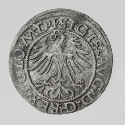 Moneta. Pusgrašis. Žygimantas Augustas (1544–1572). 1565 m. LDK. 1565